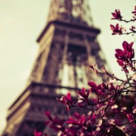 башня и цветы