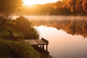 озеро в лесах