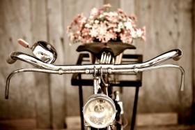 велосипед, цветы