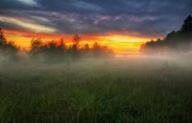 поле закат