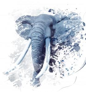 слон нарисованный